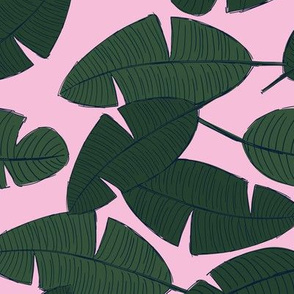 Lush leaves palm tree leaf garden tropical summer vibes and surf beach dreams green pink