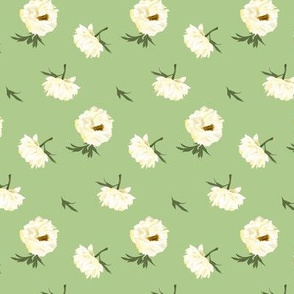 white peonies on green
