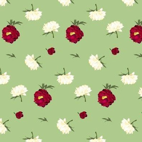 red and white peonies on green