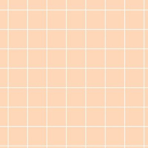 Soft peach pool tiles geometric minimal trend grid peach pink