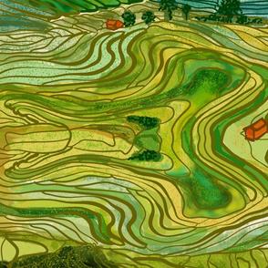 Terraced Rice Paddy Fields- Landscape