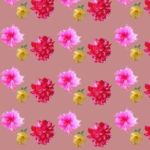 Dusky Pink Flower Garden