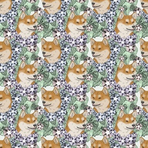 Floral red Shiba Inu portraits