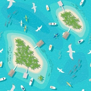 Flight Over Paradise