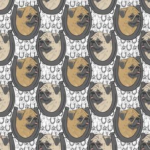 Fawn Pug horseshoe portraits