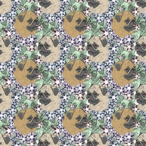 Floral Fawn Pug portraits