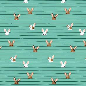 Peek a Boo Bunnies ©Jennifer Garrett