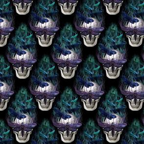 Skull fantasy moth