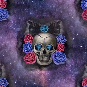 Galaxy skull and black cat
