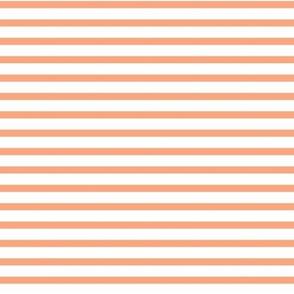 Coral Stripe 1x 1.36