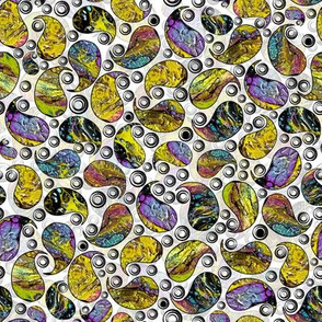 Many Paisley Colors