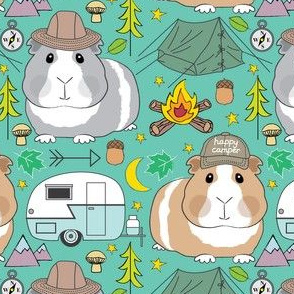 camping guinea pigs on teal