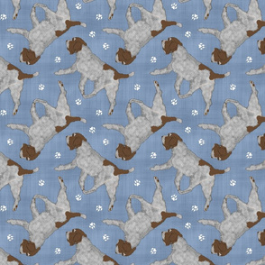 Trotting Wirehaired pointing Griffon and paw prints - faux denim