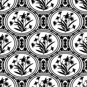 Rudbeckia White Black-01