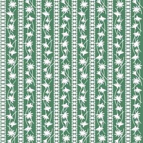 Rudbeckia Green White Stripe-01