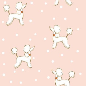 Dogs - Poodle on light pink dotted background