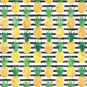 (small scale) pineapples - watercolor on black stripes C19BS