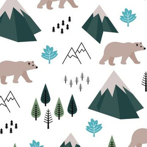 Mountains and grizzly bears wild wanderlust forest woodland Canadian Montana nature reserve green blue
