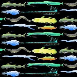 8 deep sea fish colorful on black