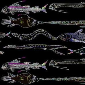8 deep sea fish in lines