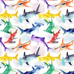 Rainbow hammerheads in the clouds