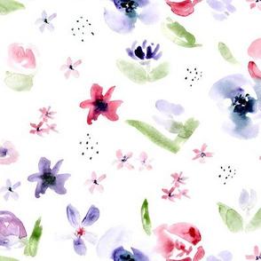 Tender bloom • watercolor florals