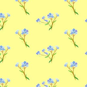 Forget Me Not on Yellow