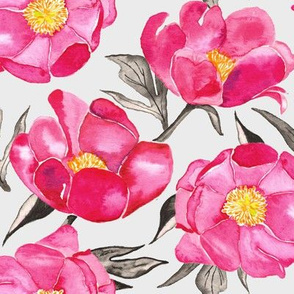 19-09f Large Hot Pink Peony Gray Black Yellow Spring