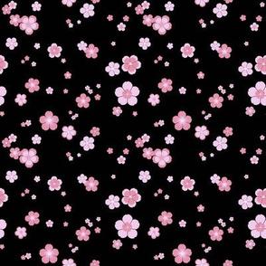 Cherry Blossom flurry
