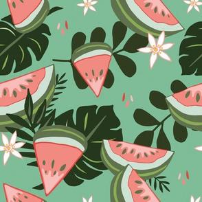 Watermelon on Green
