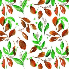 colorful leaf fall