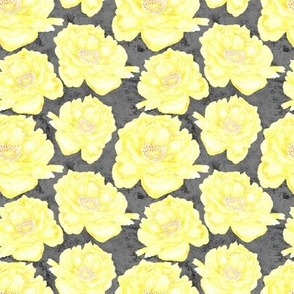 19-09d Small Pale Yellow Peony on Gray