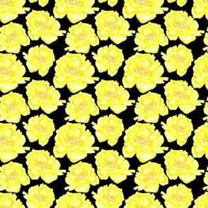 19-09b Small Peony Yellow Watercolor Floral Black