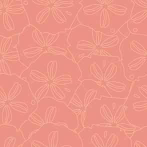 Pink Textured Sand Dollars