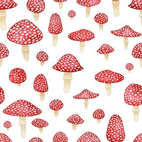 Red Mushrooms on White - Large Print