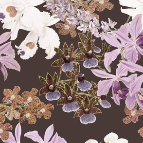 Botanist's Orchids on Chocolate 150