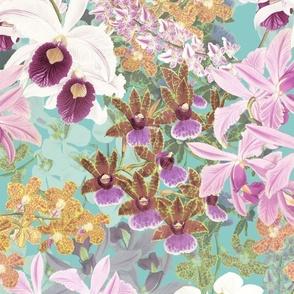 Botanist's Orchids II on Aqua 150