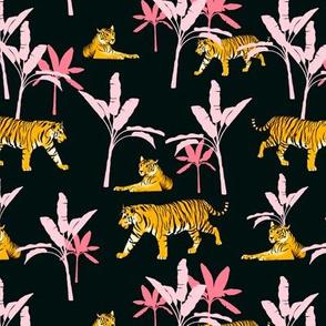 13_tiger patterns