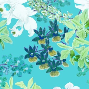 Botanist's Orchids on Turquoise 150