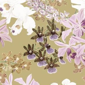 Botanist's Orchids on Tan 150