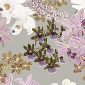 Botanist's Orchids on Driftwood 150