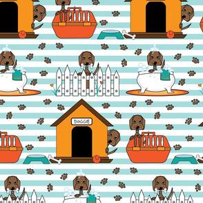Wilbur's Doggie Day