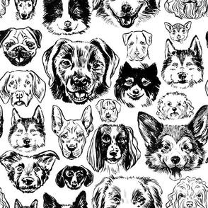 dogs - black + white