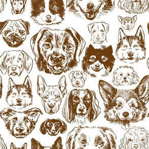 dogs - brown