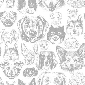 dogs - grey