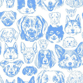 dogs - periwinkle