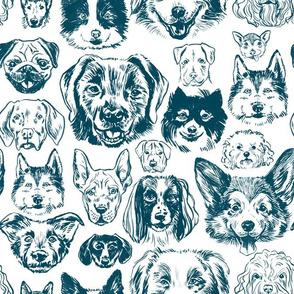 dogs - ocean