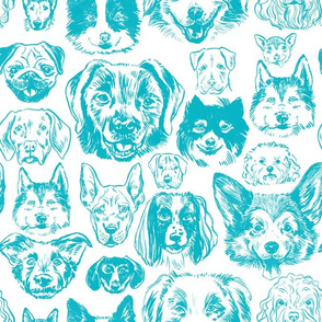 dogs - teal