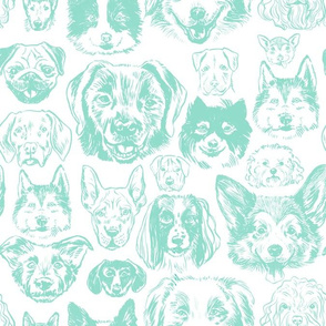 dogs - turquoise