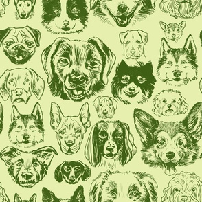 dogs - citron + forest